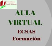 Logo of AULA VIRTUAL ECSAS