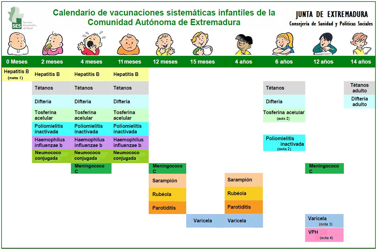 Calendario De Vacunacion 2020.Ventana Abierta A La Familia Contenido